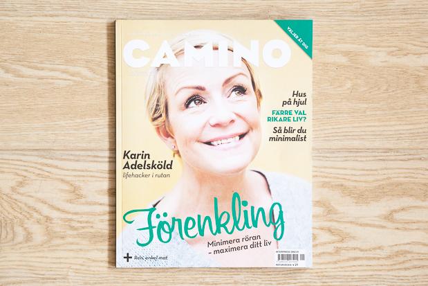 Karin Adelsköld omslag